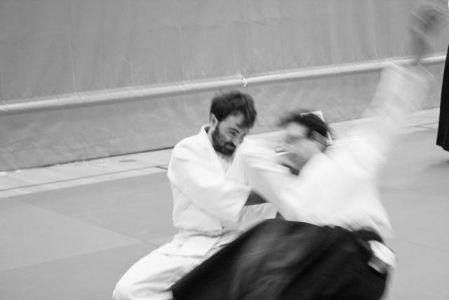 bsi-aikido-8200.jpg